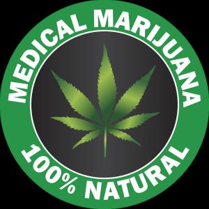 Lecznicza marihuana - ile ma THC?